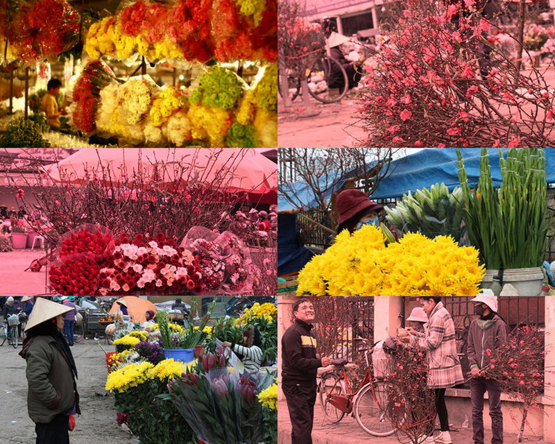 Vietnam-visa.co.uk - Quang Ba Flower Market - an ideal way to experience a morning in Hanoi