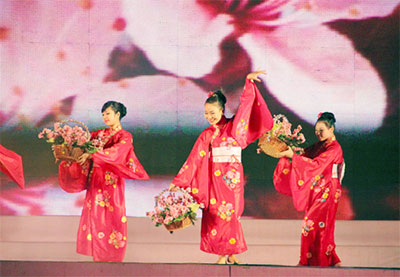 Vietnam visa - Cherry blossom festival to be held in Halong in March