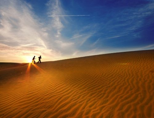 Mui Ne ranked in world's top ideal sand-boarding destinations