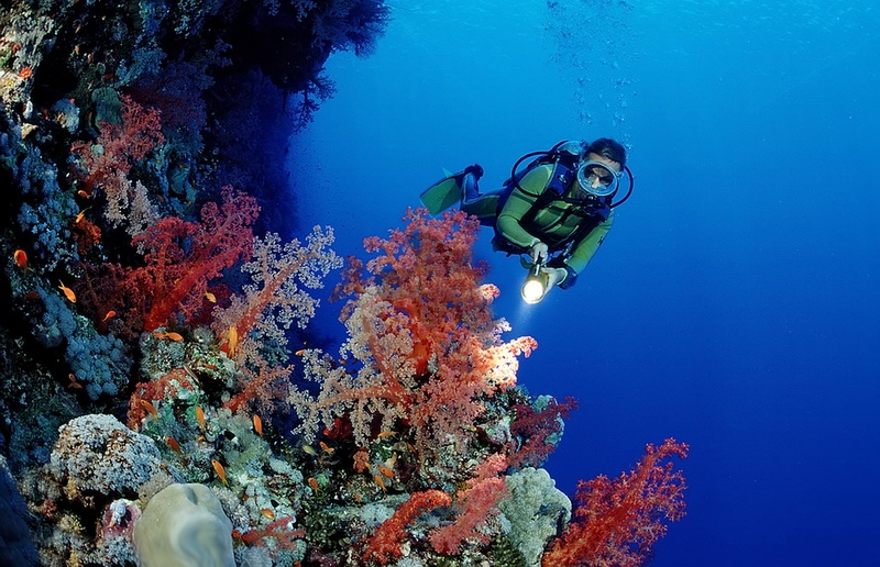 Scuba diving in Phu Quoc Island - Vietnam visa application from UK